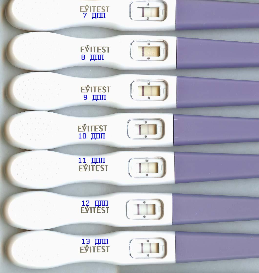 Какие самые чувствительные тесты на беременность